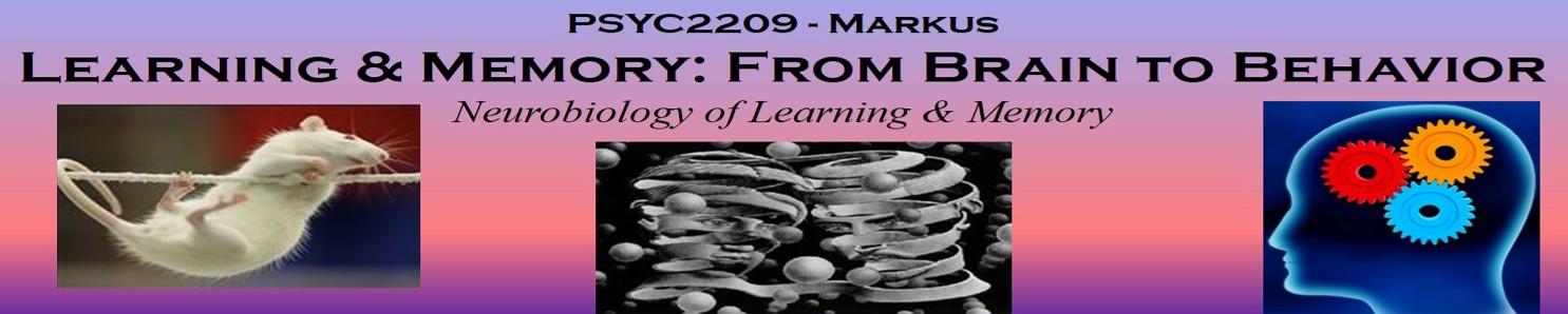 PSYC2209Class